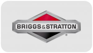 Ersatzteile Briggs Stratton